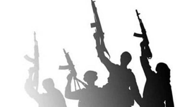 आतापर्यंत काश्मीरमध्ये ४० ते ५० दहशतवाद्यांनी घुसखोरी, आणखी ३०० ते ३५० दहशतवादी घुसखोरीच्या तयारीत